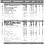 Estados financieros vigencia 2020